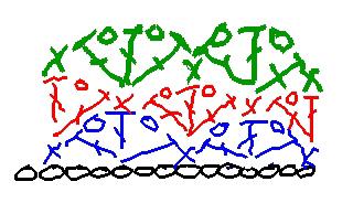 Easy Crochet Pattern: Shell Look Baby Blanket (Crochet)