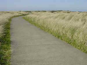 beach walk path sidewalk stretching curving away towards the skyline waving brown grass on both sides wallpaper 1280 x 960 pixels